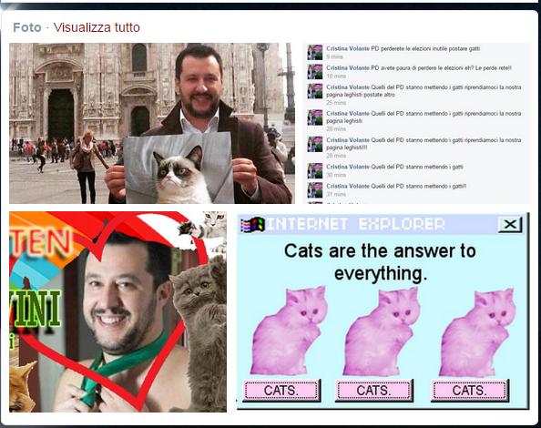 Tweet per l hashtag  gattinisusalvini su Twitter
